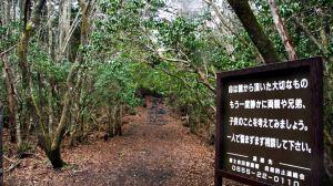 aokigahara-jukai_1